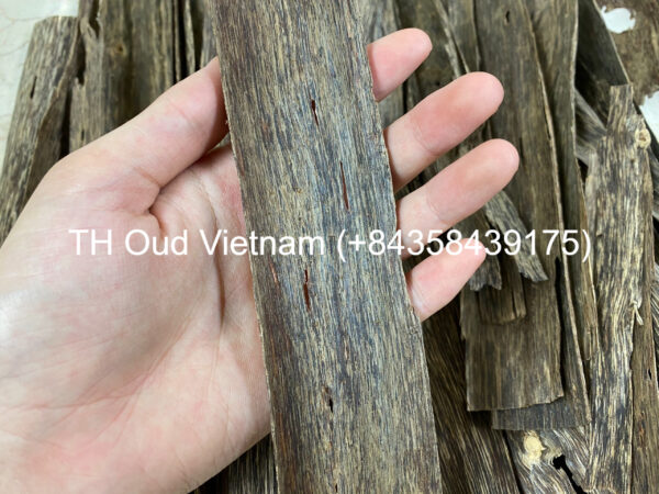 Vietnam Agarwood Chips - Double Side 1