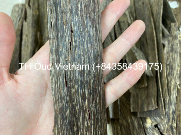 Vietnam Agarwood Chips - Double Side 2
