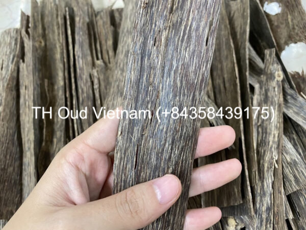 Vietnam Agarwood Chips - Double Side 3