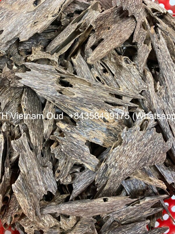 Vietnamese Ant Agarwood Chunk -7bn35t
