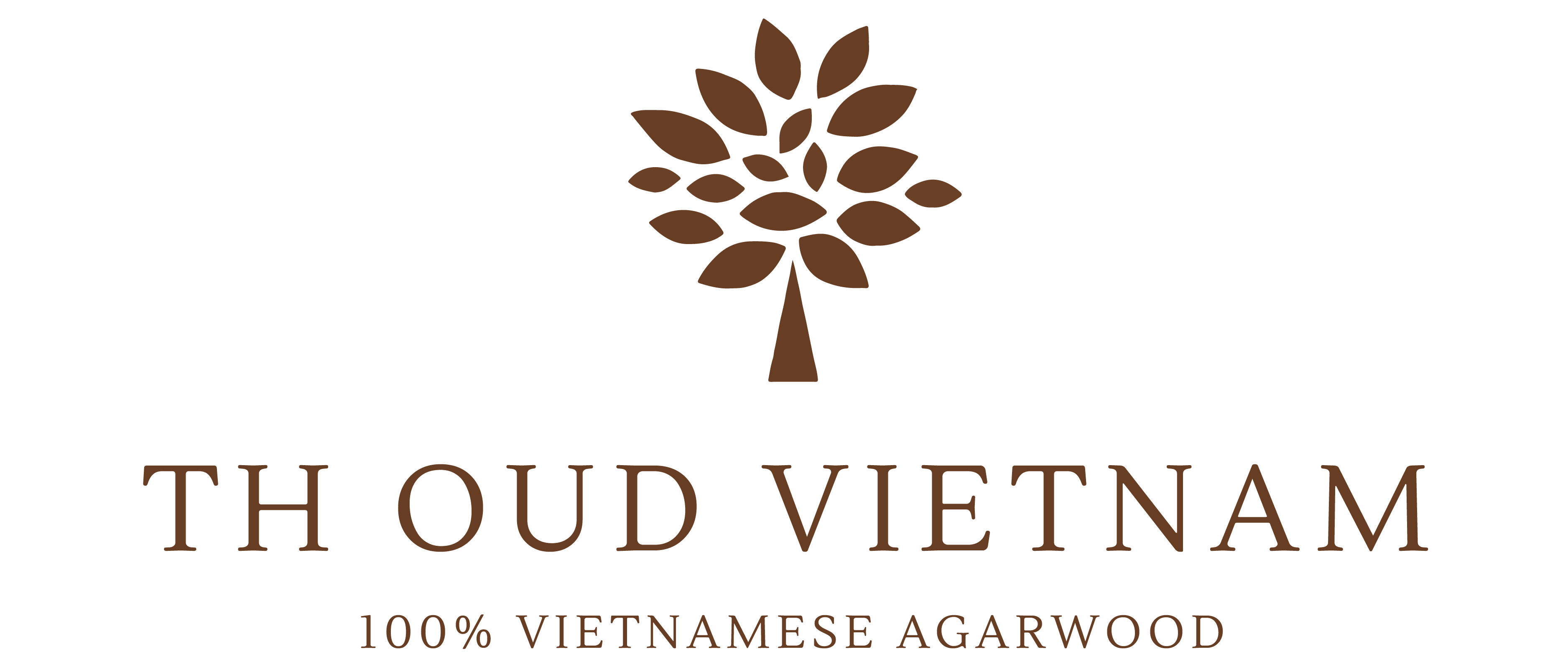 TH Oud Vietnam – The Leading Agarwood Vietnam Supplier, Wholesale & Retail